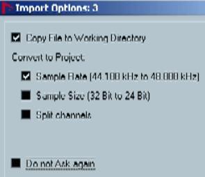 Import options в программе Nuendo audio