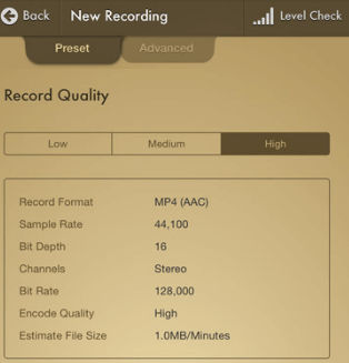 Вкладка Preset программы Voice Record Pro