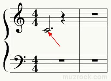 Как выглядит средняя нота До первой октавы на нотном стане
