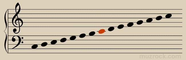 Нота до и два общих нотных стана в музыке