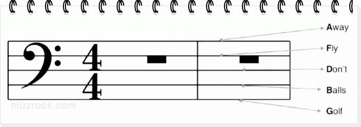 Учим ноты нотоносца на линейках басового ключа для фортепиано