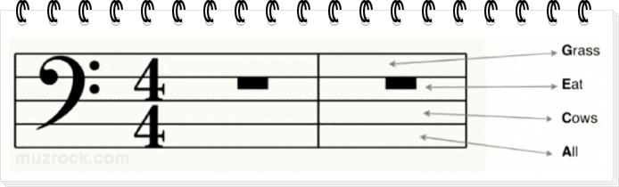 Учим ноты на промежутках басового ключа нотного стана